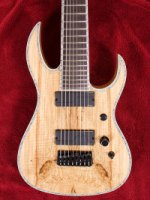 Shredzilla Prophecy Exotic Flattop 8 String with Hipshot Spalted Maple (SZ824SM)
