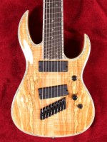 Shredzilla 8 Prophecy Archtop Fanned Frets - Spalted Maple (SZA824FFSM)